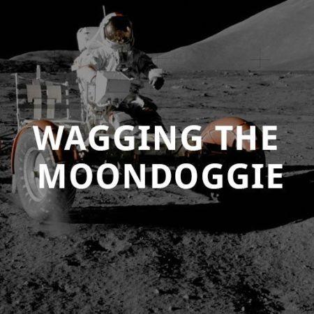 Wagging the Moondoggie (Audio) | Dave McGowan | Pure Grace