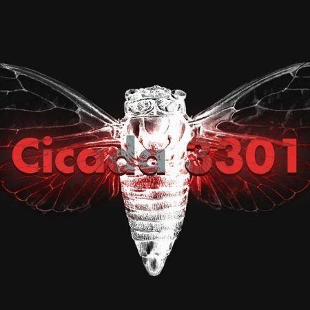 Cicada 3301 | An Internet Mystery