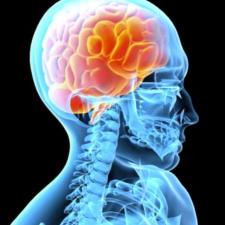 Mind Control - Part 3 of 6   The Awakening Mind