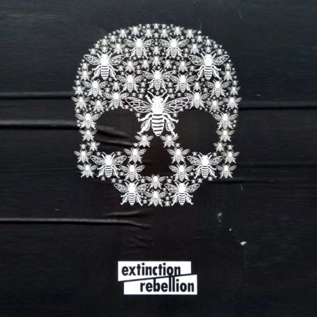 Extinction Rebellion - The Facts | Windows on the World