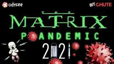 THE MATRIX P1ANDEMIC 2021   John Thor