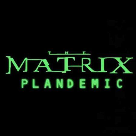 The Matrix - PLANdemic Part 1 | The Bantics Show